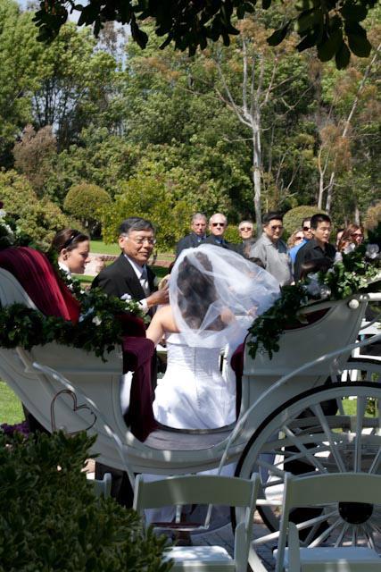 San Diego Wedding Officiant – Joann Lane